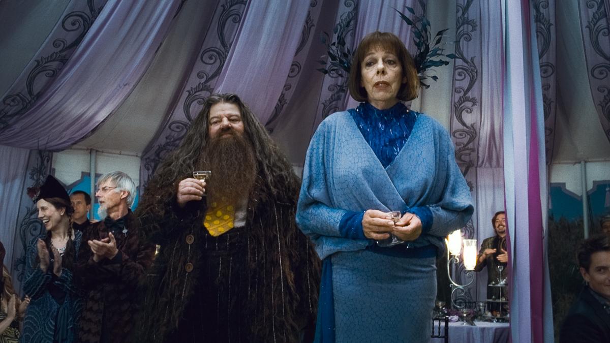 Harry Potter und die Heiligtümer des Todes - Teil 1 : Bild Frances de la Tour, Robbie Coltrane
