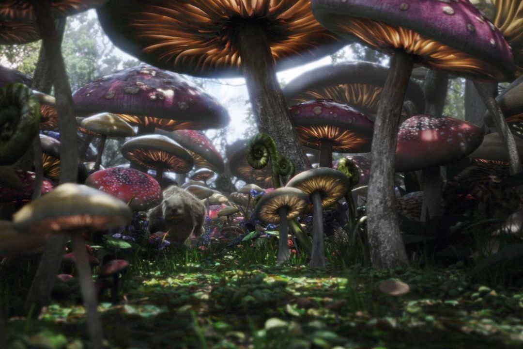 Alice im Wunderland : Bild