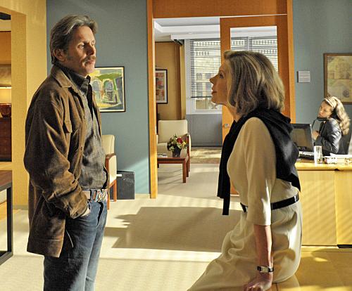 Good Wife : Bild Christine Baranski, Gary Cole