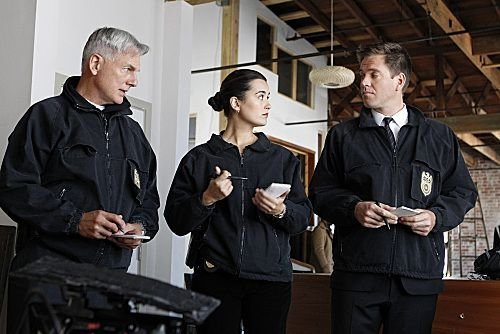Bild Cote De Pablo, Mark Harmon, Michael Weatherly