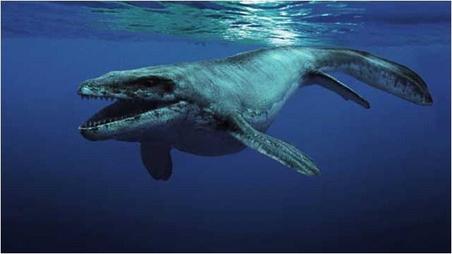 Sea Rex 3D: Reise in die Zeit der Dinosaurier : Bild