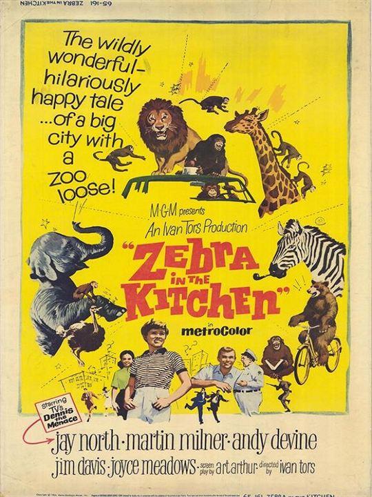 Bild von Ein Zebra in der Küche - Bild 1 auf 0 - FILMSTARTS.de
