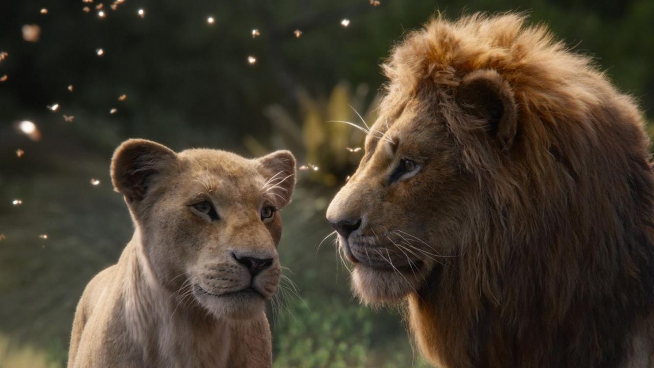 """Darum sind die Oscar-Chancen von """"Der König der Löwen"""" gerade stark gesunken"""