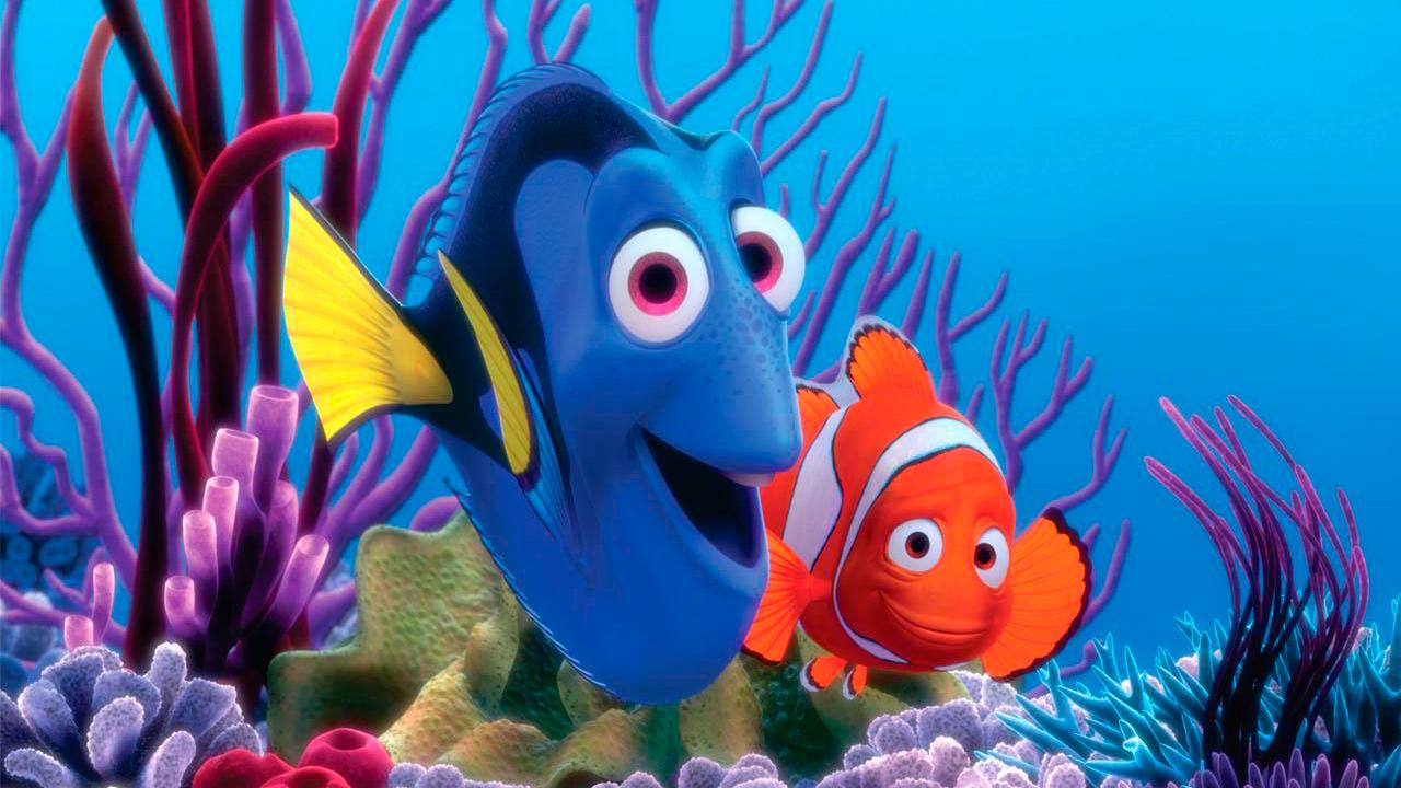 Findet Nemo : Bild