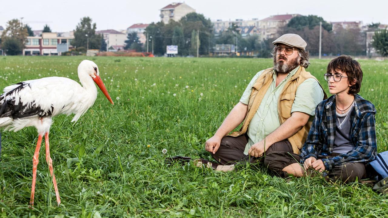 Der Kommandant und der Storch : Bild