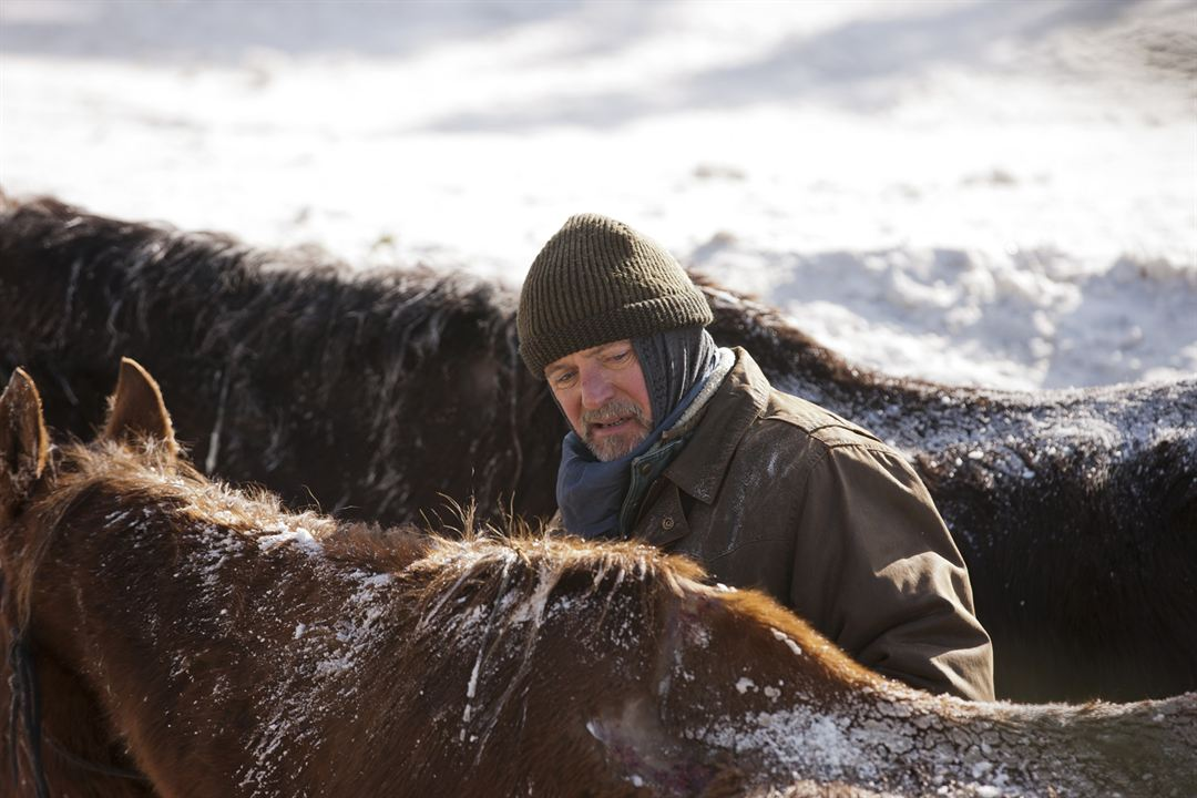 Ruf der Pferde - Ein Mädchen folgt seinem Herzen : Bild Aidan Quinn