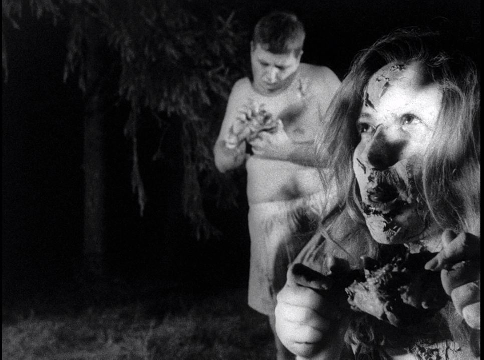 Die Nacht der lebenden Toten : Bild