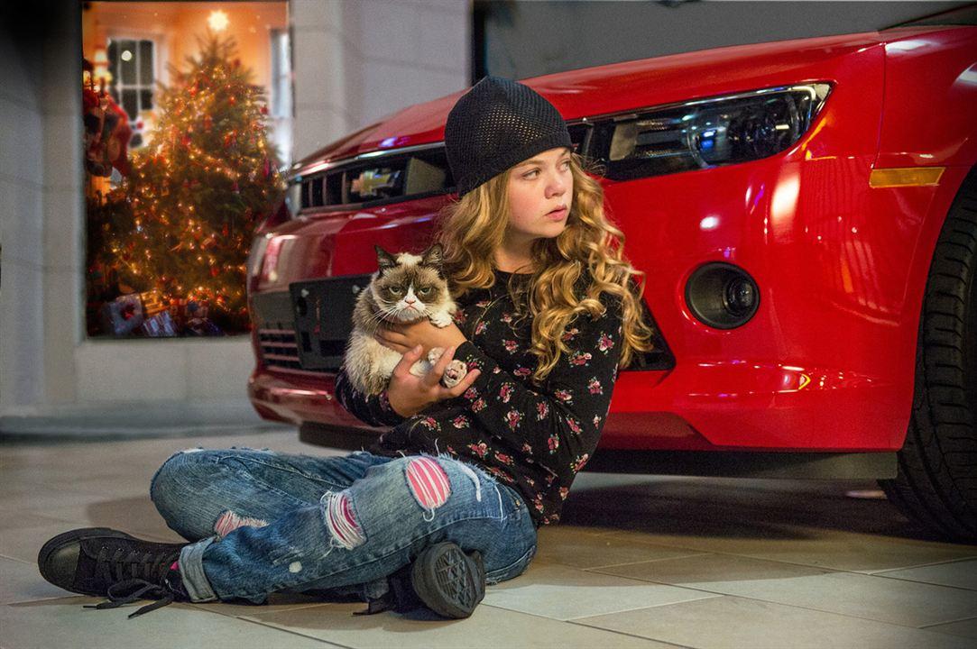 Grumpy Cat's miesestes Weihnachtsfest ever : Bild Megan Charpentier