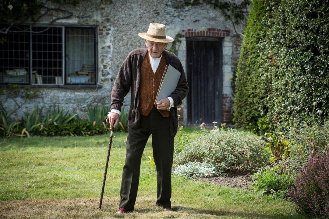 Mr. Holmes : Bild