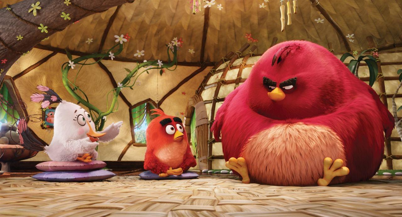 Angry Birds - Der Film : Bild