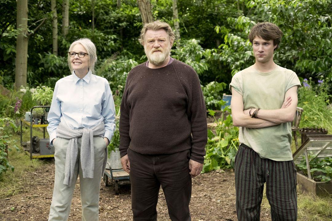 Hampstead Park - Aussicht auf Liebe : Bild Brendan Gleeson, Diane Keaton, Hugh Skinner