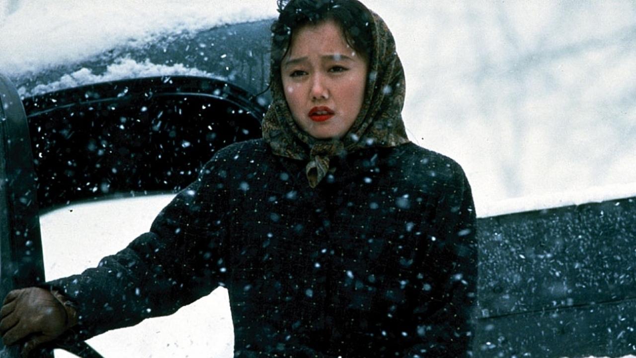 Schnee, der auf Zedern fällt : Bild Youki Kudoh