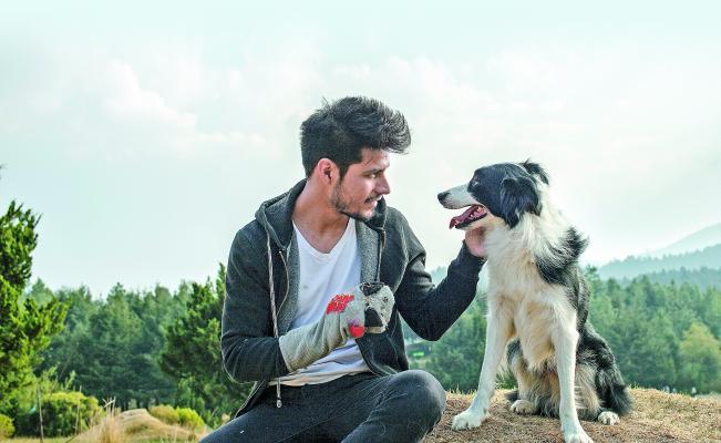Cometa: Él, su perro y su Mundo : Bild