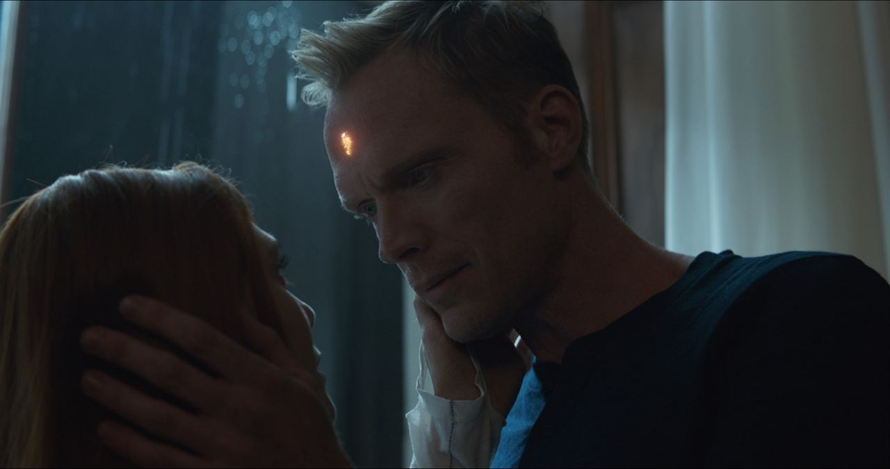 Avengers 3: Infinity War : Bild Elizabeth Olsen, Paul Bettany