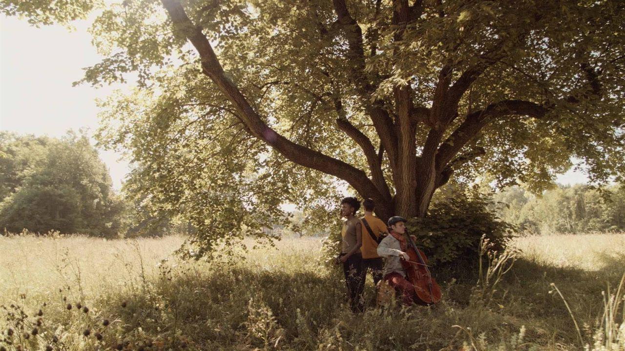 Kuzola, le chant des racines : Bild