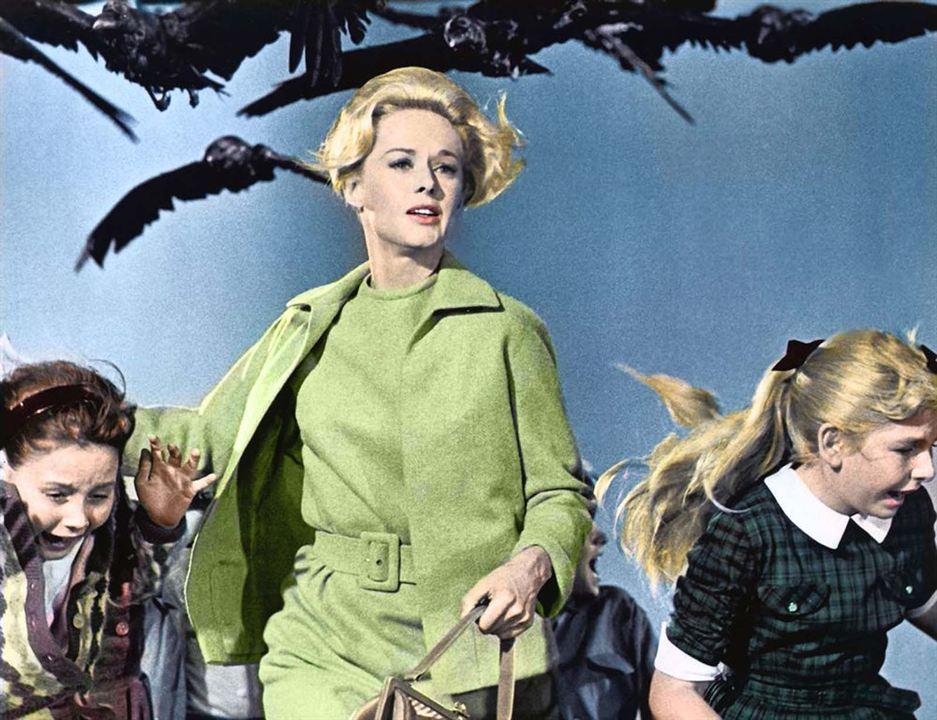 Die Vögel : Bild Tippi Hedren