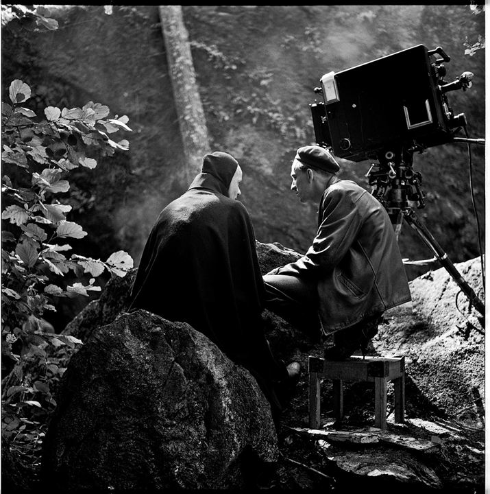 Bergman - A Year in a Life : Bild