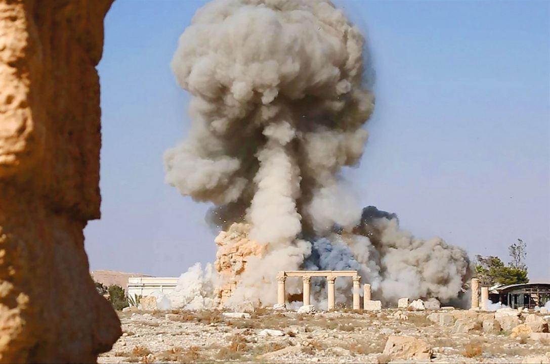Palmyra : Bild