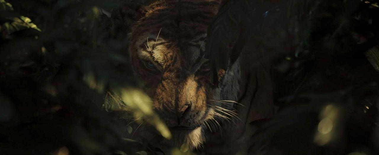 Mogli: Legende des Dschungels : Bild