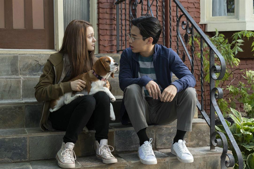 Bailey - Ein Hund kehrt zurück : Bild Henry Lau, Kathryn Prescott
