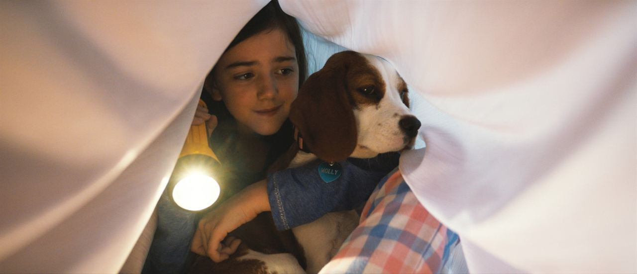 Bailey - Ein Hund kehrt zurück : Bild Abby Ryder Fortson