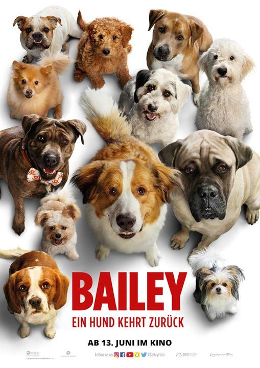 Bailey - Ein Hund kehrt zurück : Kinoposter