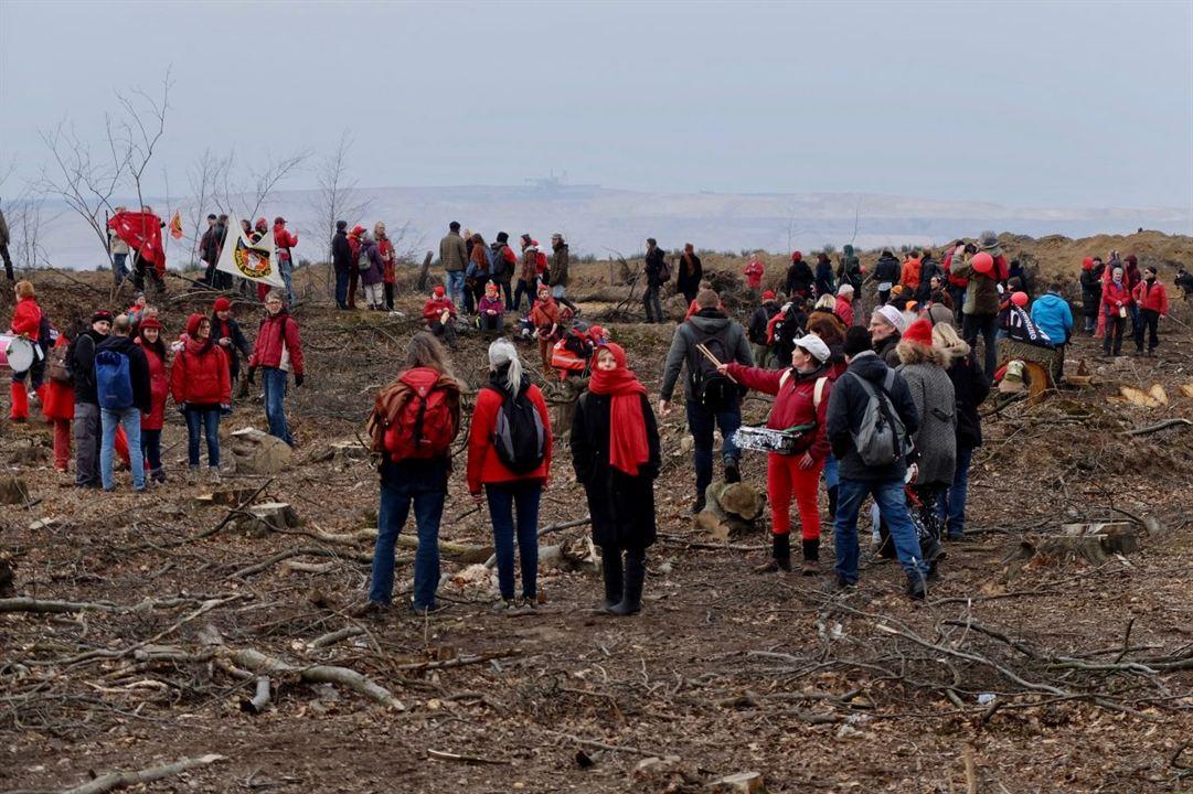 Die rote Linie – Vom Widerstand im Hambacher Forst : Bild