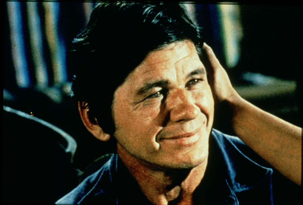 The Meanest Men in the West : Bild Charles Bronson