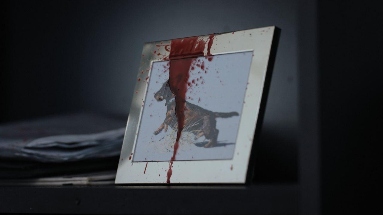 Kill Me Today, Tomorrow I`m Sick! : Bild