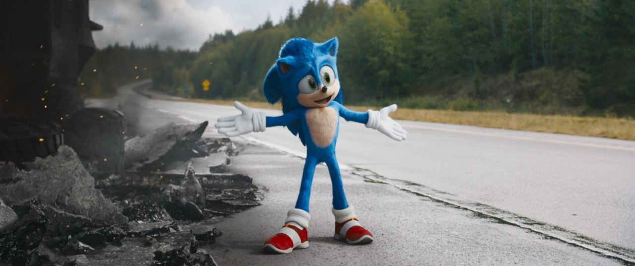 Sonic The Hedgehog : Bild