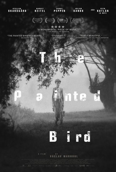 The Painted Bird : Kinoposter