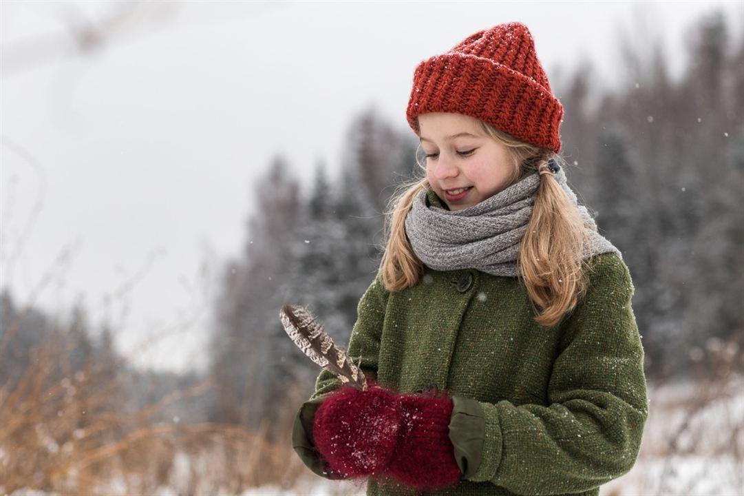 Weihnachten im Zaubereulenwald : Bild
