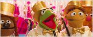 "Muppet-Mockumentary vom ""Big Bang Theory""-Macher: Erster Trailer zur neuen TV-Serie ""The Muppets"""
