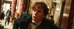 """""""Phantastische Tierwesen und wo sie zu finden sind"""": Featurette zum """"Harry Potter""""-Spin-off mit Eddie Redmayne"""