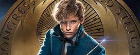 """""""Phantastische Tierwesen und wo sie zu finden sind"""": Sequels zum """"Harry Potter""""-Spin-off zeigen die Magie in weiteren Ecken der Welt"""