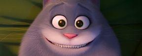 """Katzen-Drogentrip: Neuer Trailer zu """"Pets 2"""""""