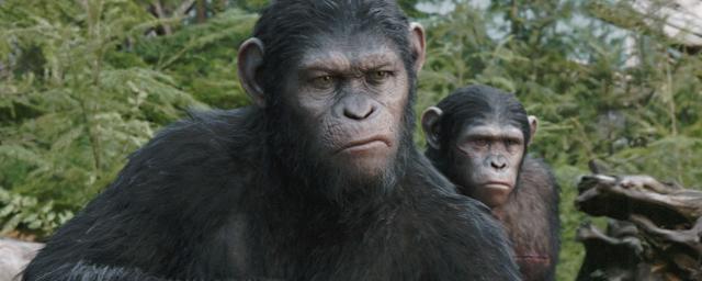Planet Der Affen Revolution James Franco