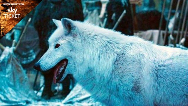 Game Of Thrones Das Ist Der Wahre Grund Für Jons Lieblose