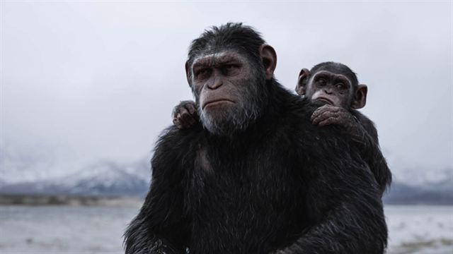 """Nach """"Planet der Affen 3"""": So könnte es mit der herausragenden Reihe weitergehen"""
