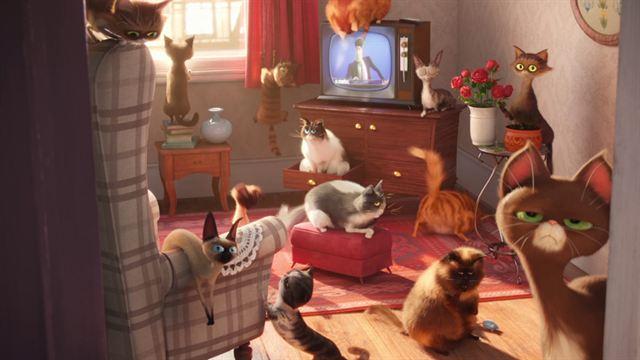 erster deutscher trailer zum animationsabenteuer pets