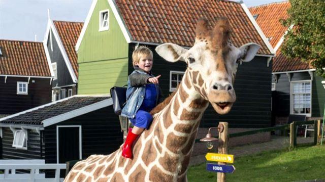 Mein Freund, die Giraffe Trailer DF