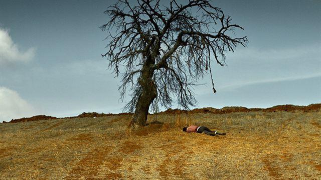 The Wild Pear Tree Trailer (2) OV