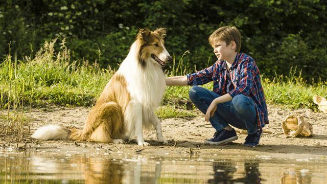 Lassie - Eine abenteuerliche Reise Trailer (2) DF