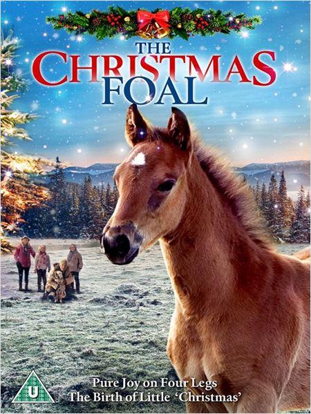 საშობაო კვიცი / The Christmas Colt (2013)