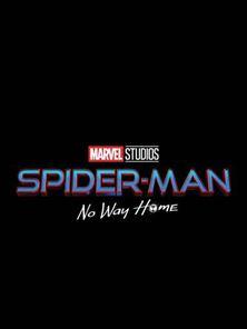 Spider-Man 3: No Way Home Trailer DF