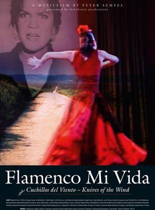 Flamenco Mi Vida