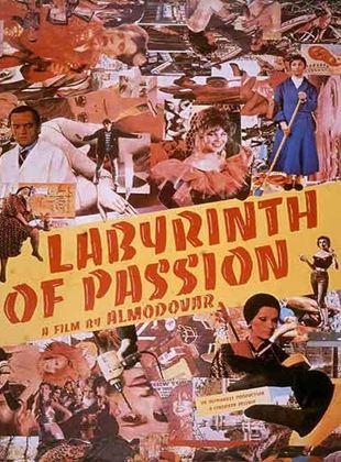 Labyrinth der Leidenschaften