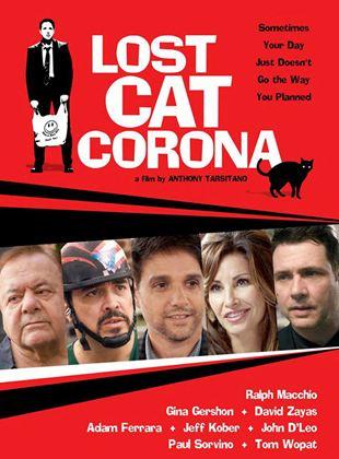 Lost Cat Corona