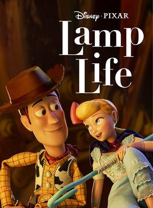 Lamp Life