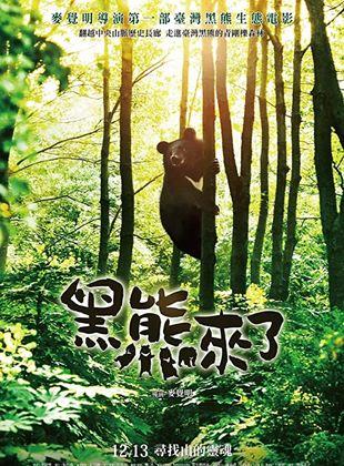 Formosan B.B. Is Coming